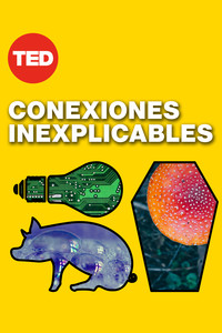 Ted Talks: Conexiones inexplicables